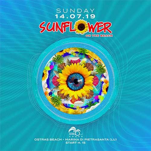 sunflower-ostras-beach-2019