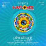Sunflower on The Beach | Planet Funk